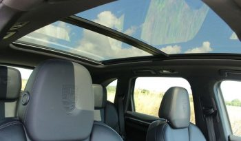 Porsche Cayenne 3.0 E-Hybrid S Platinum Edition Tiptronic 4WD (s/s) 5dr full